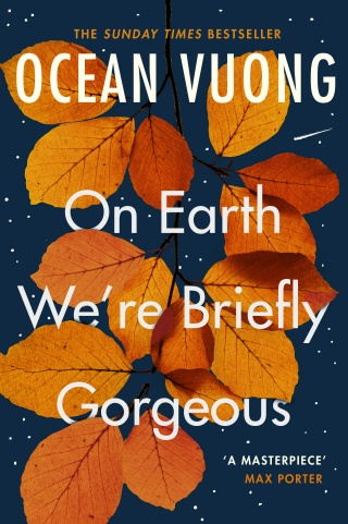 On Earth We're Briefly Gorgeous by Ocean Vuong |
