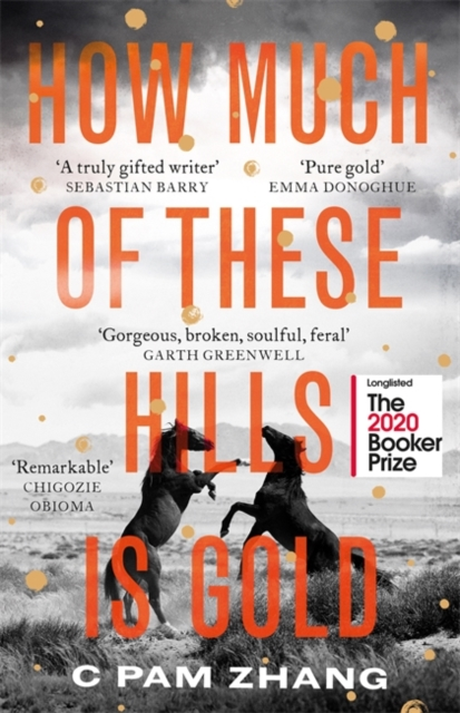 How Much of These Hills is Gold – Booker Prize Longlist 2020 by C Pam Zhang