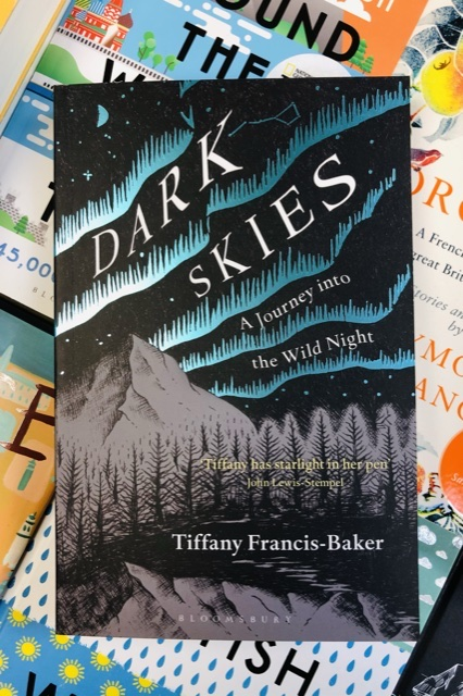 Dark Skies by Tiffany Francis-Baker