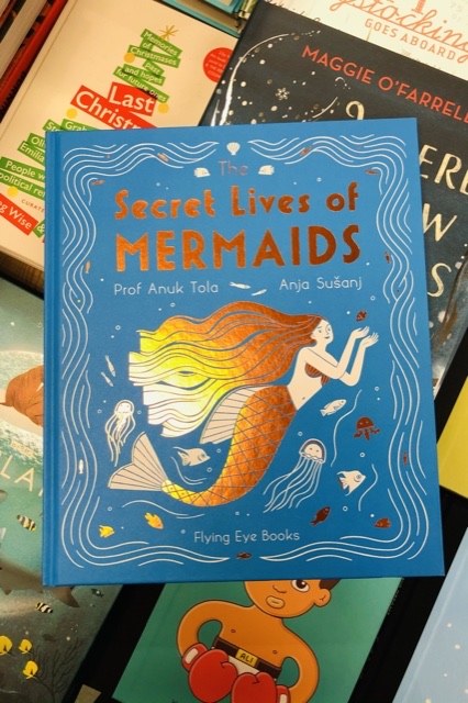 The Secret Lives of Mermaids by Anuk Tola & Anja Susanj